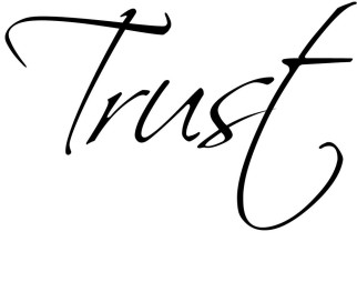 Trust-Cursive-Elegant-Pretty-Cute-vinyl-wall-decal-quote-sticker-Inspirational-On-Wall-Decal-Sticker-Vinyl